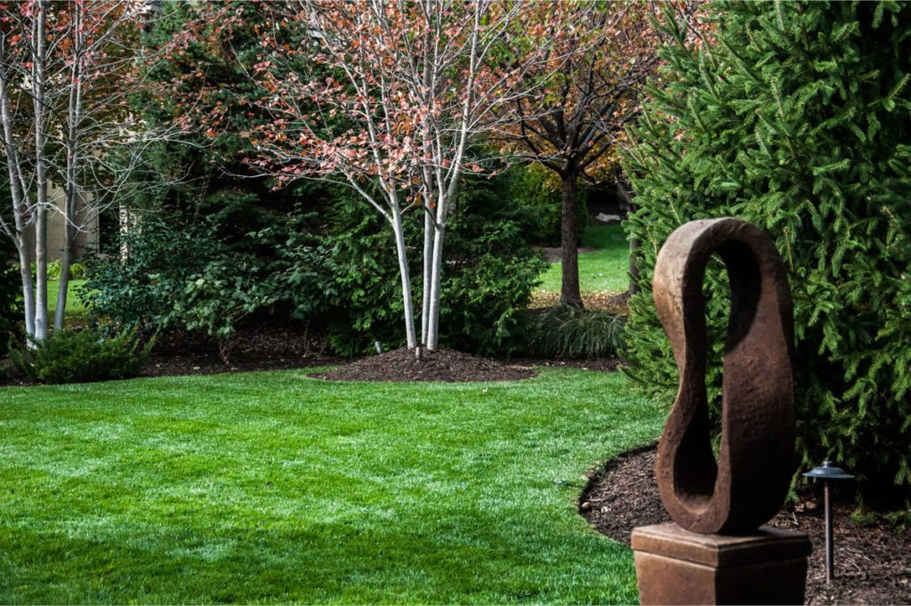 Doctor S Lawn Kansas City Care